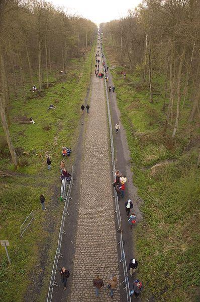 El bosque de Arenberg es espectacular, se entra en bajada a 60 km por hora y cualquier caída puede ser tremenda